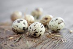 Huevos de codornices. Foto de archivo libre de regalías
