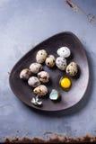 Huevos de codornices Imagen de archivo libre de regalías