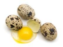 Huevos de codornices Fotos de archivo