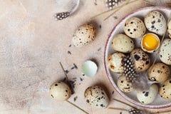 Huevos de codornices adornados con la pluma Comida orgánica y de la dieta Estilo rústico Visión superior Fotos de archivo libres de regalías