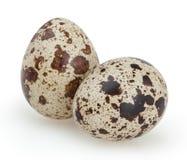 Huevos de codornices aislados en blanco Imagenes de archivo