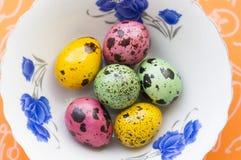Huevos de codornices coloreados en una placa Imagenes de archivo
