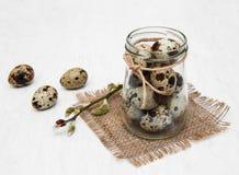 Huevos de codornices con la rama del sauce Fotografía de archivo