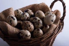 Huevos de codornices de Pascua en una cesta Fotos de archivo libres de regalías