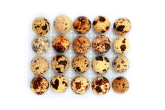 Huevos de codornices en blanco Foto de archivo