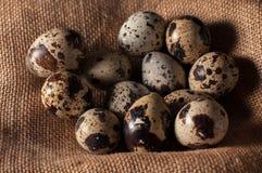 Huevos de codornices en bolso en heno y una vieja rama de árbol Viejo fondo de madera rústico Pascua feliz Fotografía de archivo libre de regalías