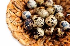 Huevos de codornices en cesta de mimbre Fotografía de archivo libre de regalías
