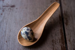 Huevos de codornices en cucharas de madera Imagen de archivo