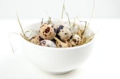 Huevos de codornices en cuenco Fotografía de archivo libre de regalías