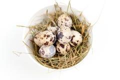 Huevos de codornices en cuenco Imagenes de archivo