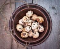 Huevos de codornices en cuenco de cerámica Imágenes de archivo libres de regalías