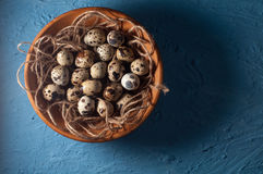 huevos de codornices en cuenco de madera en cierre azul del fondo para arriba Imagenes de archivo