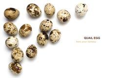 Huevos de codornices en el fondo blanco, con el espacio para el texto Imagen de archivo libre de regalías