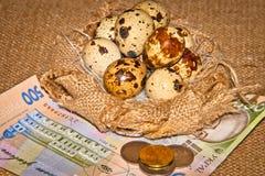 Huevos de codornices en el fondo de billetes de banco Imagen de archivo