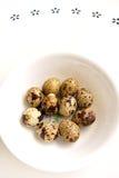 Huevos de codornices en el tazón de fuente blanco Imagen de archivo libre de regalías