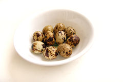Huevos de codornices en el tazón de fuente blanco Imágenes de archivo libres de regalías