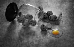 Huevos de codornices en la tabla Huevo de codornices quebrado Aún vida blanco y negro con los huevos de codornices Foto de archivo