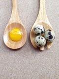 Huevos de codornices en la yema de madera de la bifurcación y de huevo Imagen de archivo