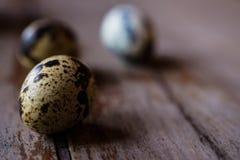 Huevos de codornices en las cucharas de madera Foto de archivo