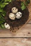 Huevos de codornices en una jerarquía en un fondo de madera Imagenes de archivo