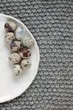 Huevos de codornices en una placa Imagen de archivo libre de regalías