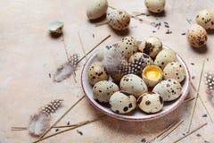 Huevos de codornices frescos adornados con la pluma Alimento biológico Estilo rústico Foto de archivo