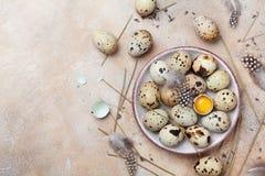 Huevos de codornices frescos adornados con la pluma Alimento biológico Estilo rústico Visión superior Fotos de archivo