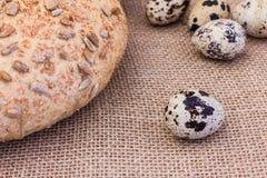 Huevos de codornices frescos con pan de centeno Fotos de archivo