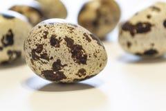 Huevos de codornices Grupo de huevos de codornices aislados en el fondo blanco Foto del primer Fotos de archivo