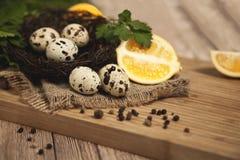Huevos de codornices - huevos de codornices en un cuenco de cerámica en el viejo fondo superficial de madera marrón, foco selecti Fotografía de archivo libre de regalías