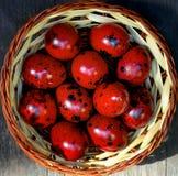 Huevos de codornices rojos Semana Santa Fotografía de archivo