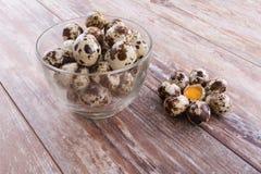 Huevos de codornices sanos Foto de archivo libre de regalías