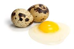 Huevos de codornices sin procesar fotos de archivo libres de regalías