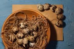 huevos de codornices vacíos del sobre en una textura azul del fondo Fotografía de archivo libre de regalías