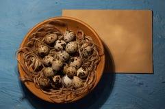 huevos de codornices vacíos del sobre en una textura azul del fondo Fotografía de archivo