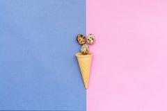 Huevos de codornices y un cono de la galleta en fondo azul y rosado Fotografía de archivo