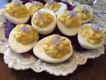 Huevos de Deviled florales Imagen de archivo libre de regalías