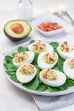 Huevos de Deviled rellenos con el aguacate, la yema de huevo y el relleno de la mayonesa, adornados con tocino en las hojas de la imágenes de archivo libres de regalías