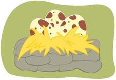Huevos de dinosaurio Foto de archivo