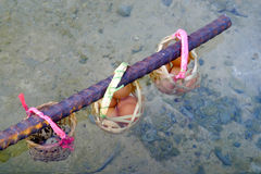 Huevos de ebullición en la charca de las aguas termales Imagen de archivo