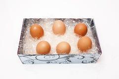 Huevos de gallina Fotos de archivo libres de regalías