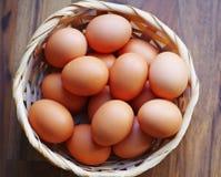 Huevos de gallina Imagen de archivo libre de regalías