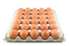 Huevos de gallina en el panel de papel en el fondo blanco Imagen de archivo