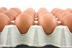 Huevos de gallina en el panel de papel en el fondo blanco Fotos de archivo