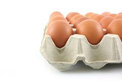 Huevos de gallina en el panel de papel en el fondo blanco Foto de archivo libre de regalías