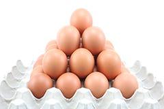 Huevos de gallina en el panel de papel en el fondo blanco Fotos de archivo libres de regalías