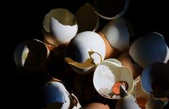 Huevos de jerarquía quebrados III Foto de archivo libre de regalías