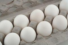 Huevos de la comida Fotografía de archivo libre de regalías