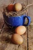 Huevos de la granja en taza azul con la paja Fotos de archivo