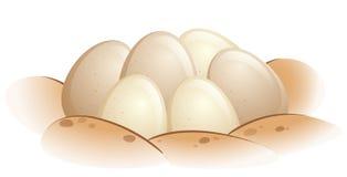 Huevos de la tortuga en la arena stock de ilustración